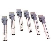 6x Ignition Coils 06-10 Passat B6 VR6 3.6 R32 Audi TT A3 Q7 3.2 - 022 905 715 B