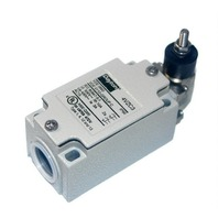 Dayton Limit Switch - DPDT - #4VZC3 - New