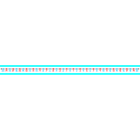 STUDENT -20 TO 20 NUMBER LINES