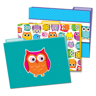 COLORFUL OWLS FOLDERS