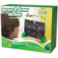 Educational Insights Sprout And Grow Window