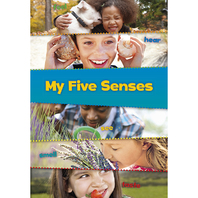 THESE ARE MY SENSES SET OF ALL 5