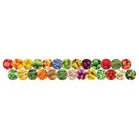 FRUITS AND VEGGIES BORDER