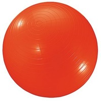 Dick Martin Sports Exercise Ball 40In Red