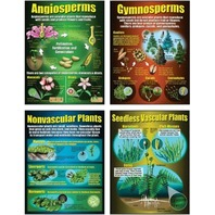 Teaching Poster Set: Types of Plants; no. MC-P206