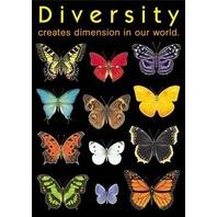 Argus Poster: Diversity Creates Dimensions; no. T-A67003