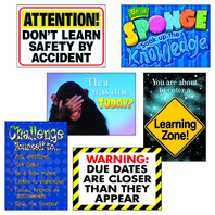 LEARNING ZONE ARGUS POSTER COMBO PK