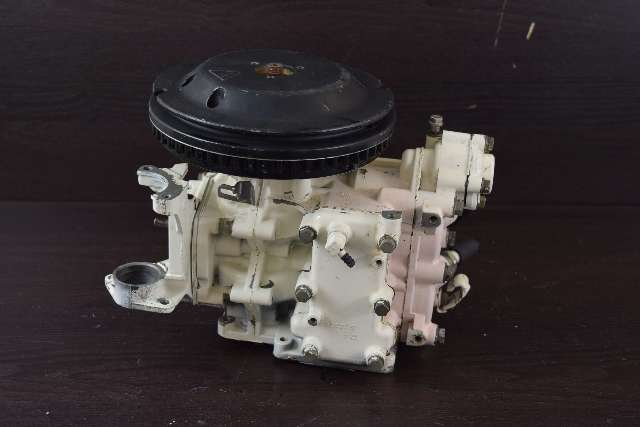 FRESHWATER! 1989-1990 Johnson Evinrude Complete Powerhead 432104 6 HP 2 Cyl