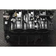 2008 & Later Evinrude ETEC E-TEC Rebuildable Powerhead 5007436 150 175 HP V6