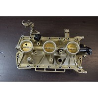 2007 & UP Evinrude Reed Plate & Throttle Body 5007025 5006252 135 150 175 200 HP