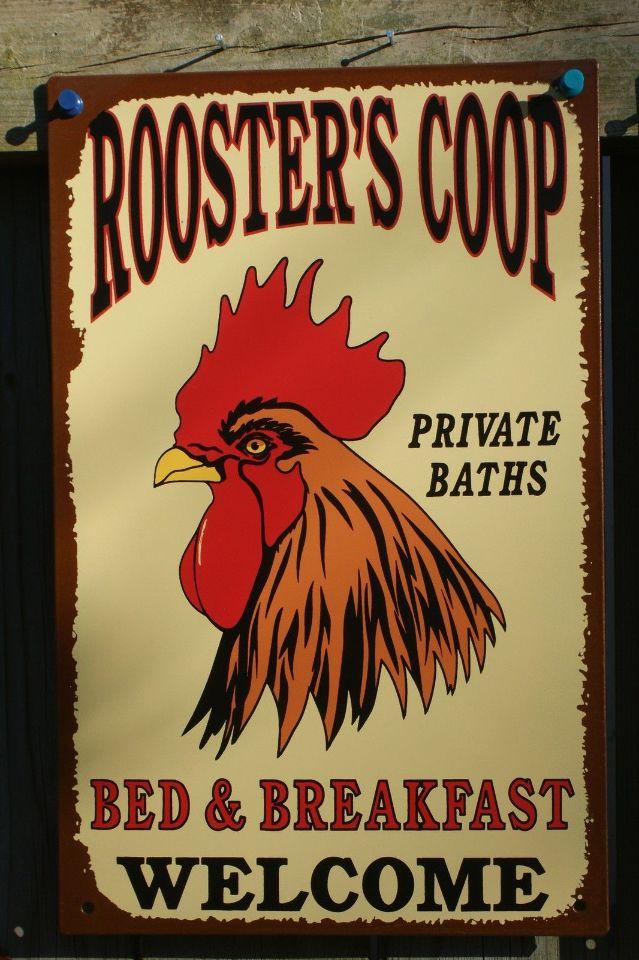 Chicken Coop Bed And Breakfast