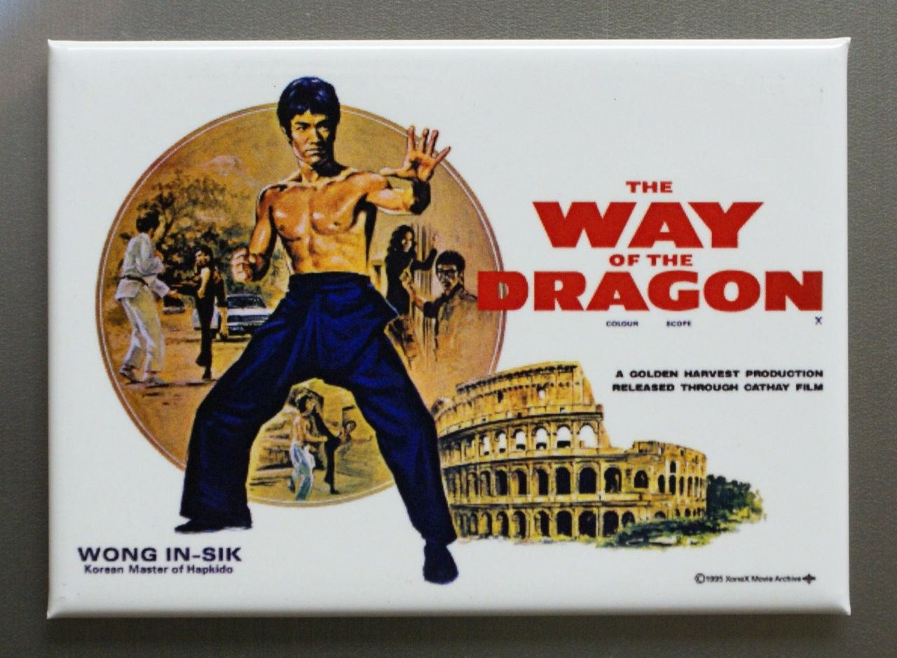 2 Way Light Switch >> Bruce Lee Way Of The Dragon Refrigerator FRIDGE MAGNET Movie Poster P14   The Wild Robot!