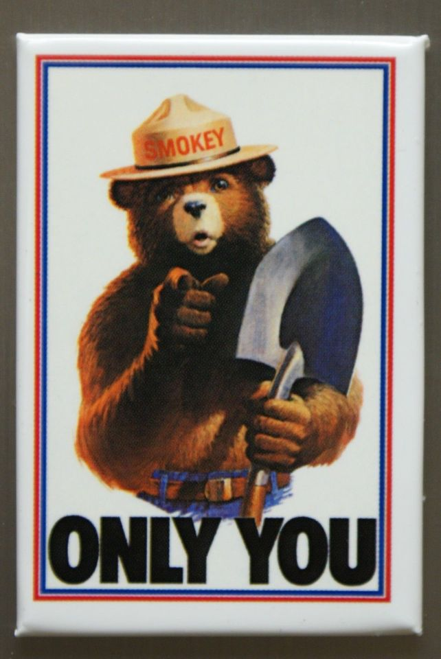 Only You Can Prevent Forest Fires FRIDGE MAGNET Smokey The Bear Classic AD F5