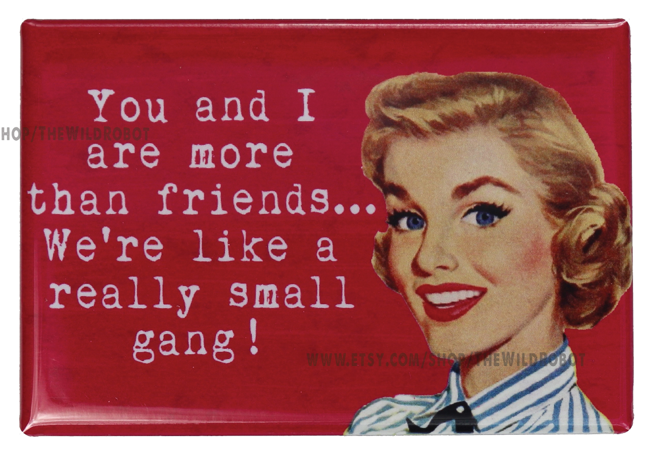 You and I Are More Than Friends FRIDGE MAGNET Funny Meme