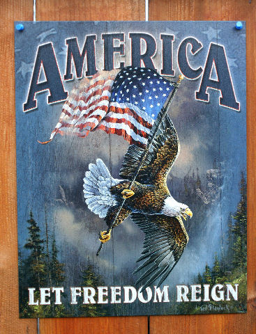 America Let Freedom Ring Tin Sign Bald Eagle American Flag