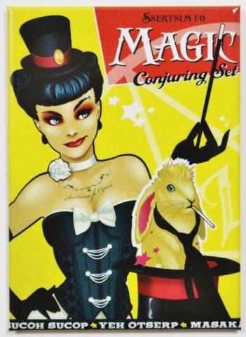Zatanna Magic Conjuring Set Bombshell  FRIDGE MAGNET DC Comics F29