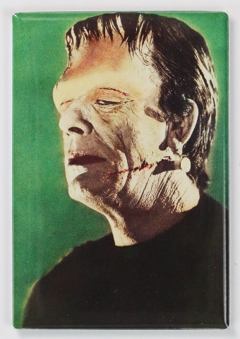 Frankenstein Fridge Magnet Universal Studios Monster
