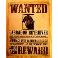 Wanted Labrador Retriever Tin Sign Pet Dog Lovers Poster Comedy Humor