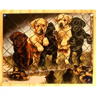 Labrador & Ducks Tin Sign Cabin Outdoors Graham Pet Dog Animal Lover Hunting B8