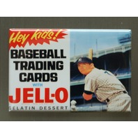 Baseball Trading Cards With Jello Refrigerator Fridge Magnet  Mickey Mantle B8