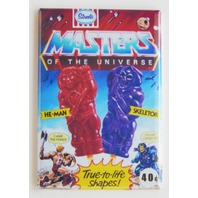 Masters of the Universe MOTU FRIDGE MAGNET Heman Skeletor 80s cartoon repro O26