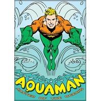 DC Comics Aquaman FRIDGE MAGNET Justice League of Friends D31
