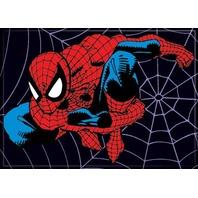 Marvel Comics The Amazing Spiderman FRIDGE MAGNET The Avengers J33