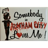 Somebody In Arkham City Loves Me Fridge Magnet DC Comics Harley Quinn The Joker