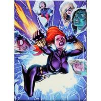 The Avengers Black Widow FRIDGE MAGNET S.H.E.I.L.D. Marvel Comics ATAM