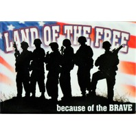 Land of the Free Because of the Brave FRIDGE MAGNET Miltary POW MIA Veteran DESM