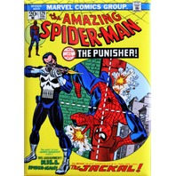 The Amazing Spiderman 129 FRIDGE MAGNET Punisher Marvel Comics Comic Book ATAM