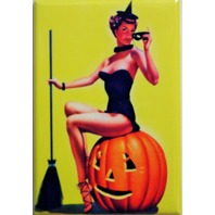 Sexy Witch sitting on Pumpkin FRIDGE MAGNET Halloween Jack O Lantern J2