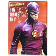 The Flash How Theoretical Am I FRIDGE MAGNET DC Comics TV Series