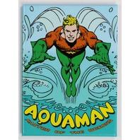 Aquaman FRIDGE MAGNET Justice League DC Comics Comic Book Aqua Man