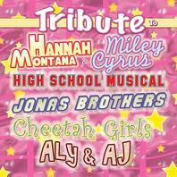 NEW Hip Kiddy CD (Tribute to Hannah Montana & Miley Cyrus, High School Musical, Jonas Brothers, Cheetah Girls, Aly & AJ)