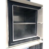 THERMO SCIENTIFIC FORMA -86⁰C ULT ULTRA LOW DUAL UPRIGHT FREEZER 8693, 17.3 CuFt