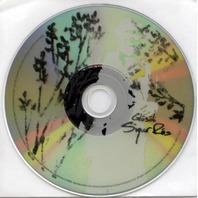 SIGUR ROS 2005 GEFFEN RECORDS glosoli promotional DVD ~~NEW~~!!