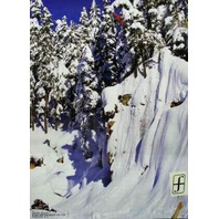 FORUM snowboard 2004 Devun Walsh BIG 2 sided poster MINT condition NEW old stock