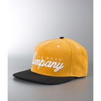 NEFF surf skateboard snowboard COMPANY snapback cap hat Tan ~NEW w/tags~!