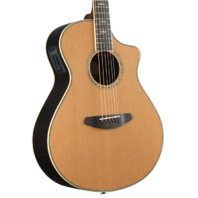 Breedlove Stage Concert CD Solid Cedar Acoustic Electric Guitar
