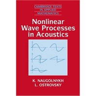 Nonlinear Wave Processes in Acoustics (Cambridge Texts in Applied Mathematics)
