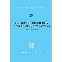 Group Cohomology and Algebraic Cycles (Cambridge Tracts in Mathematics)
