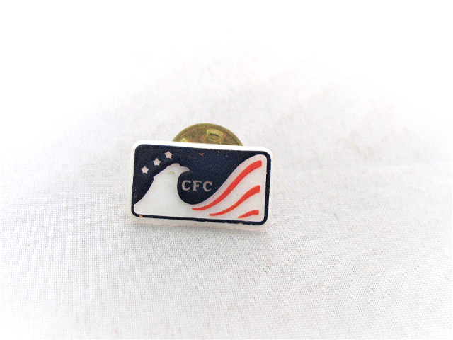 Vintage CFC Combined Federal Campaign Plastic Pin Eagle Red White Blue Flag