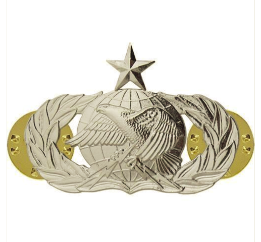 Vanguard AIR FORCE BADGE: LOGISTICS: SENIOR - MIDSIZE