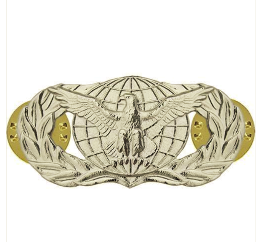 Vanguard AIR FORCE BADGE: FORCE PROTECTION - MIDSIZE