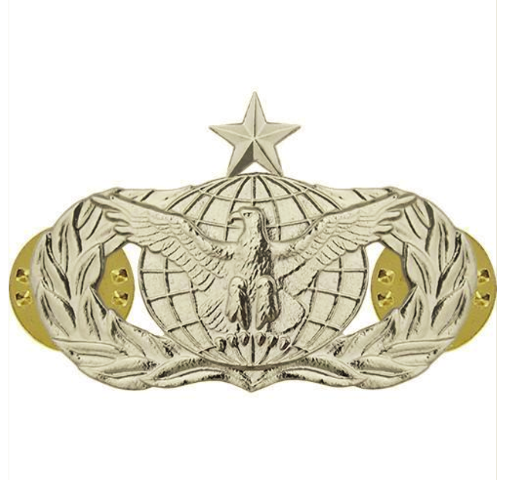 Vanguard AIR FORCE BADGE: FORCE PROTECTION: SENIOR - MIDSIZE