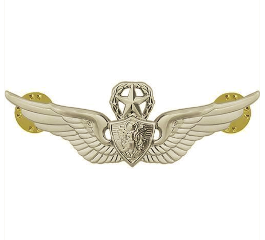 Vanguard ARMY BADGE: MASTER AIRCREW - MIRROR FINISH
