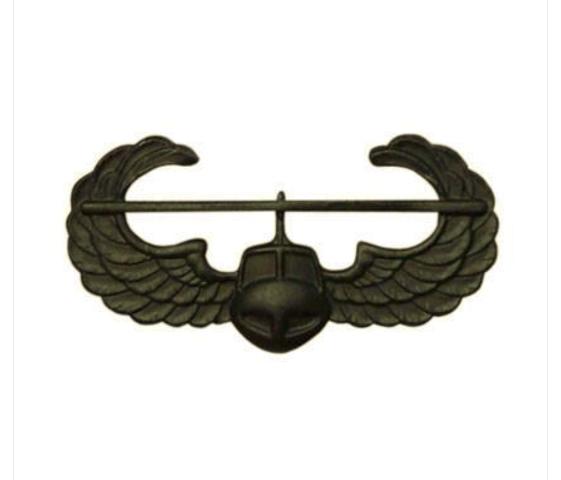 Vanguard ARMY BADGE: AIR ASSAULT - BLACK METAL