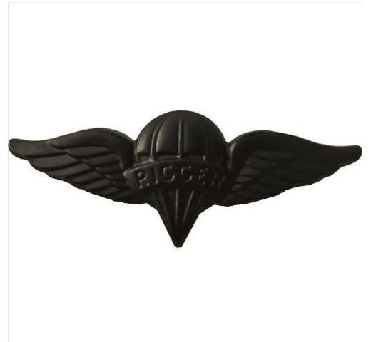 Vanguard ARMY BADGE: PARACHUTE RIGGER - BLACK METAL