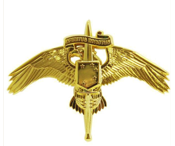 Vanguard MARINE CORP MINIATURE BADGE MARSOC MARINE CORP FORCES SPECIAL OP COMMAND